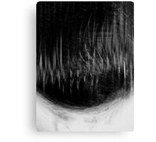 forest ...... dull heartbeat Canvas Print