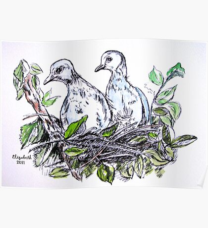 Two doves Poster