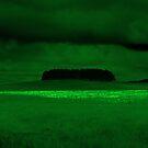 """STORM ON A GRASS SEA"" by Hilton Luckey"