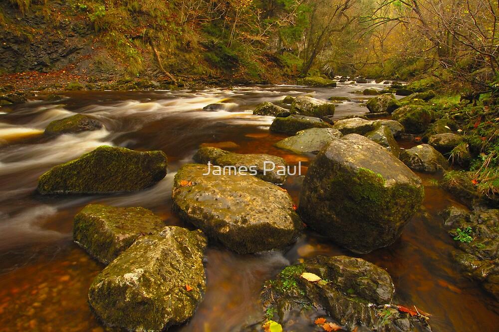 Swila Glen, River Twiss, Ingleton, Ribblesdale, Yorkshire Dales by James Paul