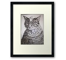 How Embarrassing! Framed Print