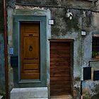 Which Door by Warren. A. Williams