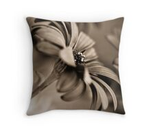 African Daisy Chocolate Style Throw Pillow