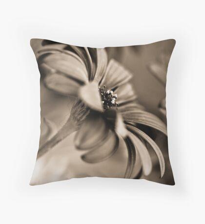 African Daisy Chocolate Style Throw Pillow