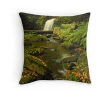 Thomasson Foss, Beck Hole, North Yorkshire Moors Throw Pillow