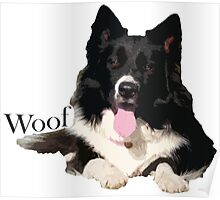 Woof - Border Collie Poster