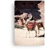 Bedouin and his camels Canvas Print