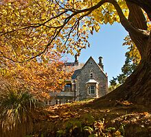 Autumn in Christchurch by pennyswork