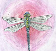 Blue and Green Dragonfly on Pink Background by Kyleacharisse