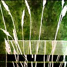"Green Monotype 1 - Printmaking by Belinda ""BillyLee"" NYE (Printmaker)"