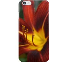 Red and Yellow Day Lily iPhone Case/Skin