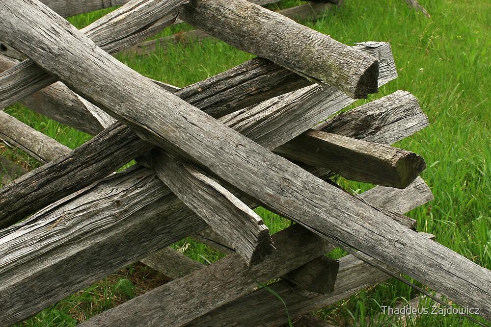 Rail fence by Thad Zajdowicz