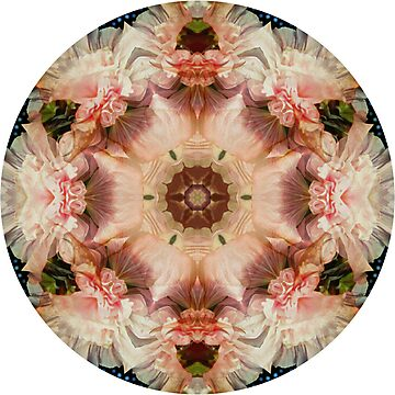 Angel trumpet and hollyhock mandala by Heidi Rand