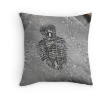50 Million Year Old Trilobite Throw Pillow