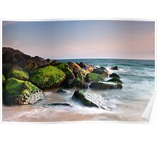 Moss on the rocks - Keyhaven Poster
