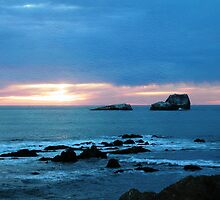 Sunset Shoe - Piedras Blancas by Cupertino