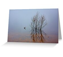 """""""Solitary"""" Greeting Card"""