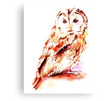 Strix aluco Canvas Print