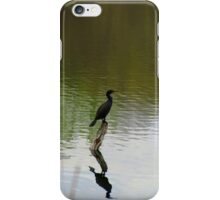 Bird on the Water iPhone Case/Skin