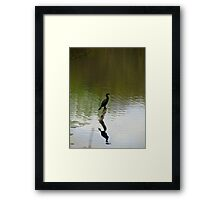 Bird on the Water Framed Print