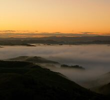 Misty Manawatu Morning by kym banks