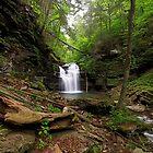 Big Falls by Tim Devine