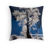 Frosted Cottonwood Tree in Yellowstone National Park Throw Pillow
