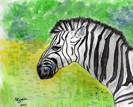 Zebra...one of my favs!  by Elizabeth Kendall