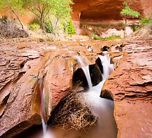 Coyote Gulch in Glen Canyon National Recreation Area by cavaroc
