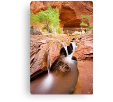 Coyote Gulch in Glen Canyon National Recreation Area Canvas Print