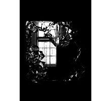 Let Me Out ~ Harperbury Photographic Print