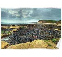 South Landing, Flamborough – looking towards Bridlington Poster
