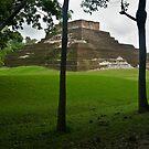 Mayan Pyramid at Comocalco by Zane Paxton