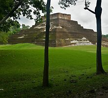 Mayan Pyramid at Comocalco by Zane Paxton