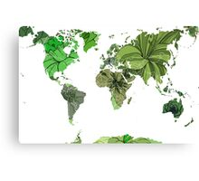 Flower world (green) Canvas Print