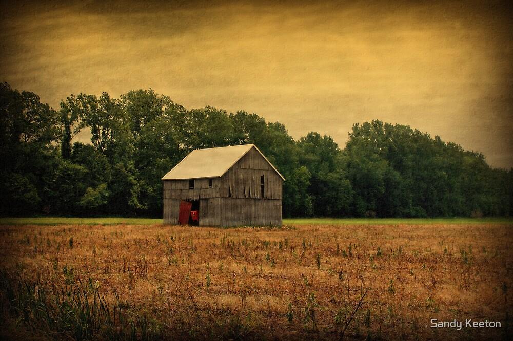 Old Barn by Sandy Keeton