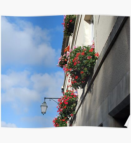 Flowers Above Poster