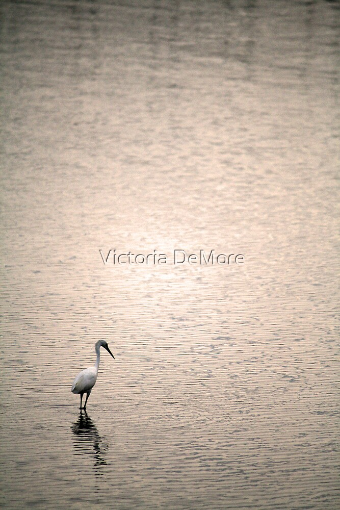 Wade in the Water by Victoria DeMore