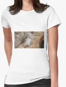 White Chipmunk. Womens Fitted T-Shirt