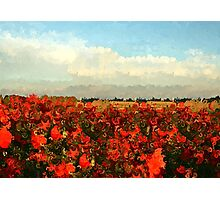 RED IMPRESSIONISM Photographic Print
