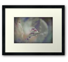 Delicate and Strong Framed Print