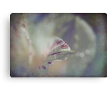 Delicate and Strong Canvas Print