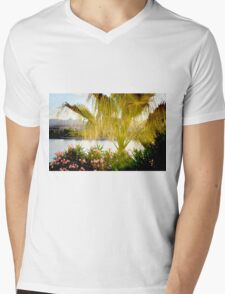 Come Early Morning Mens V-Neck T-Shirt
