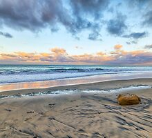 ROCK ON THE BEACH by joseph s  giacalone
