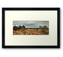 Outback Panorama Framed Print
