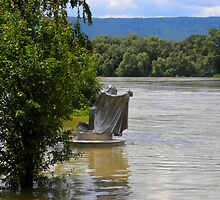 Flood, Danube, Hungary by Lyz48