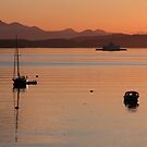 Gulf Island Evening in June by TerrillWelch