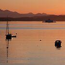 Gulf Island Evening in June by TerrillWelch