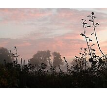 Misty Dawn Photographic Print