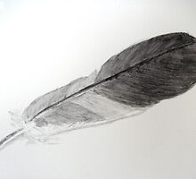 Feather for Drawing Day by Sharon Williamson
